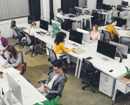 people working in bright office with plants